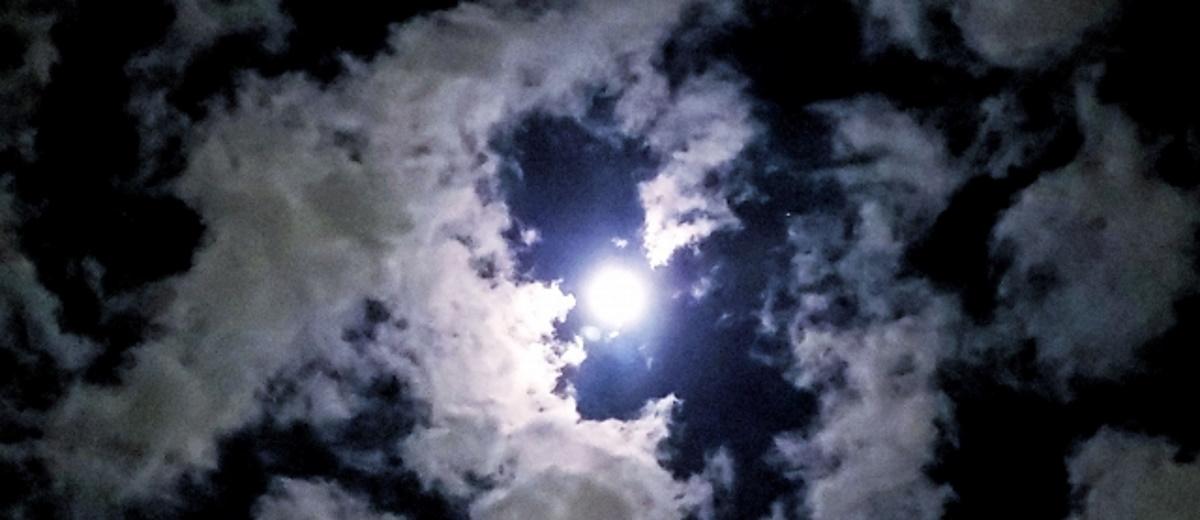nicoの星宙予報2020 双子座